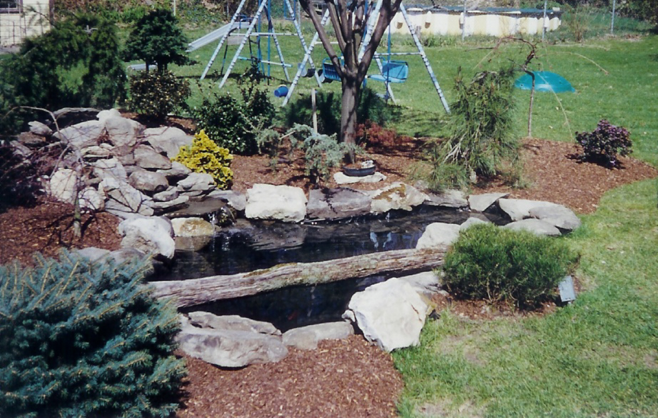 Small Backyard Ponds On Pinterest Backyard Ponds Ponds